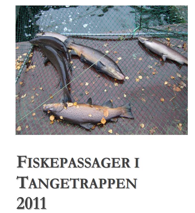 fikepassager-2011